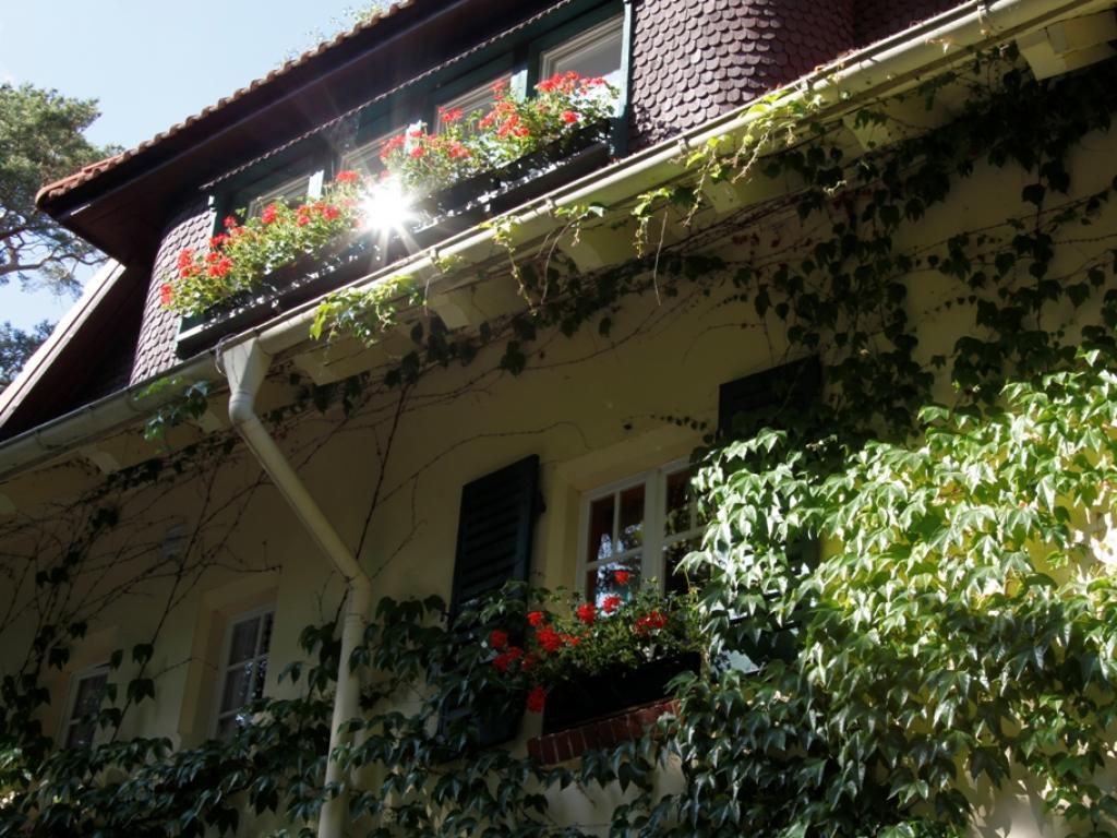 Haus Hubertus Whg H1 Boltenhagen an der Ostsee